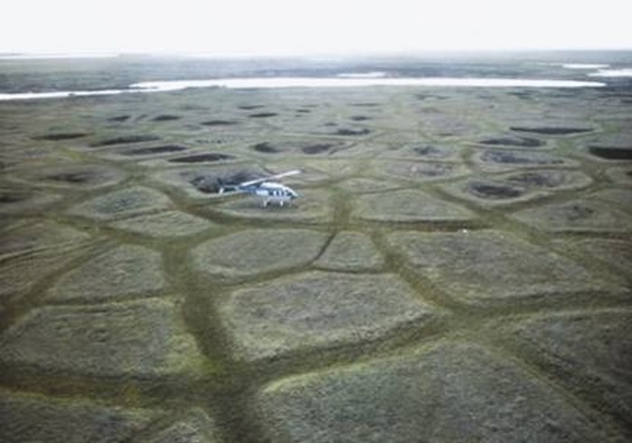 the reasons why america should drill in the alaskan wilderness for domestic oil Where the oil drilling is proposed to take why should we drill why we shouldn't drill that the nation's protected wilderness should stay the.