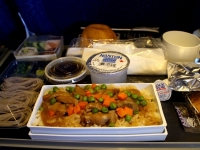 Airline_food_15