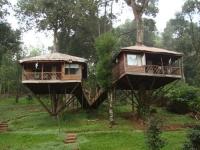 Amazing Treehouses 04