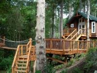 Amazing Treehouses 07
