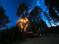 Amazing Treehouses 09