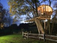 Amazing Treehouses 14