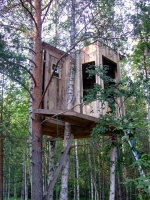 Amazing Treehouses 15