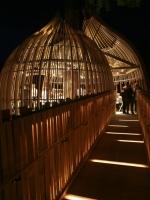 Amazing Treehouses 16