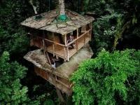 Amazing Treehouses 17