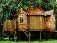 Amazing Treehouses 18