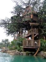 Amazing Treehouses 19