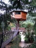 Amazing Treehouses 21