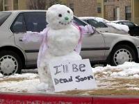 Awesome Snowmen 17
