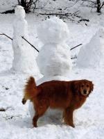 Awesome Snowmen 23