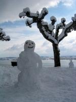 Awesome Snowmen 30