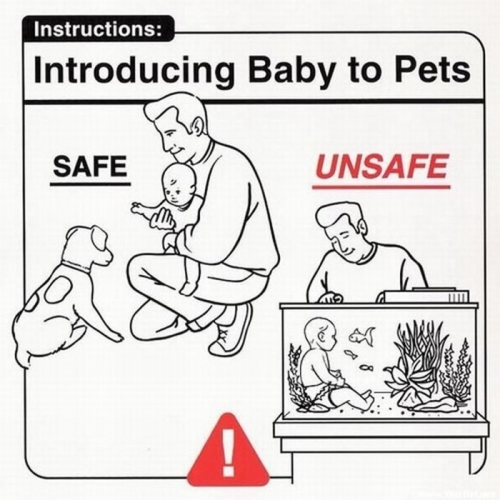 Baby Instructions 17