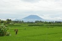 Bali Trip 01