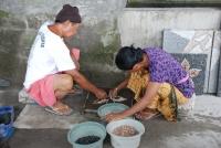 Bali Trip 13