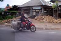 Bali Trip 24