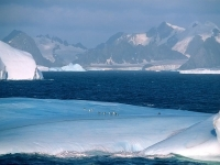 Beautiful Antarctica 06