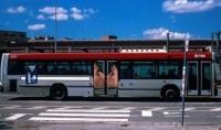 Bus Art 11