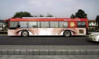 Bus Art 17