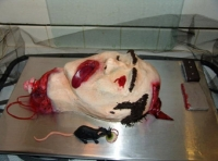 Cake Fails 24