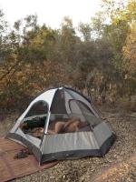 Camping 26
