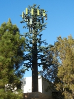 Cell Phone Towers 18