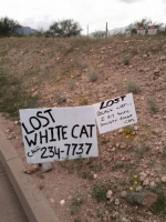Clever Vandalism 06