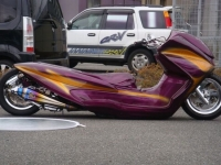 Cool Custom Bikes 25