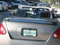 Custom License Plates 13
