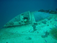 Diving In Chuuk 05