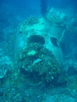 Diving In Chuuk 10