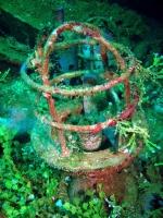 Diving In Chuuk 17