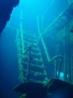 Diving In Chuuk 23