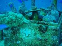 Diving In Chuuk 41