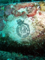 Diving In Chuuk 42