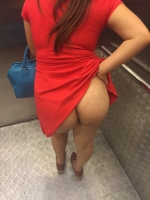Elevator Flashers 24