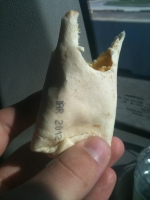 Fast Food Fails 11