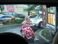 Fast Food Lovers 09