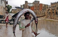 Fisherman In Somalia 01