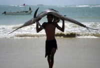 Fisherman In Somalia 06