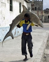 Fisherman In Somalia 18