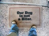 Funny Doormats 15