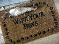 Funny Doormats 17