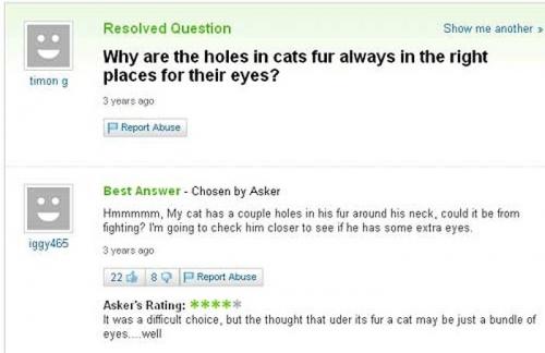 Funny Yahoo Answers 28