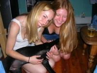 Girls And Dogs 29