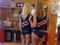 Hooters Hotties 01
