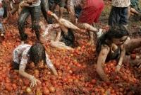 La Tomatina 16
