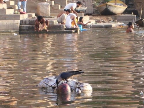 Life On The Ganges 13