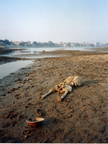 Life On The Ganges 34
