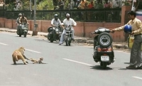 Meanwhile In India 07