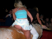Mechanical Bull Flashing 17